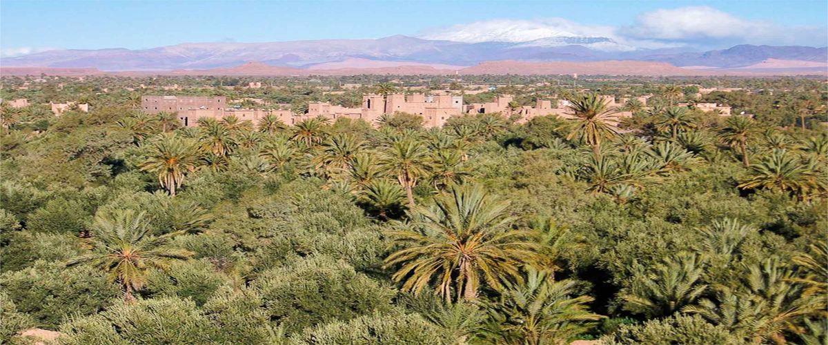 5 Days Tour Marrakech to Desert